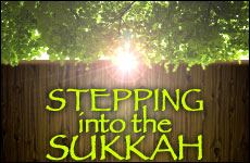 Stepping into the Sukkah